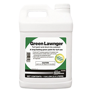 Green Lawnger Product Image
