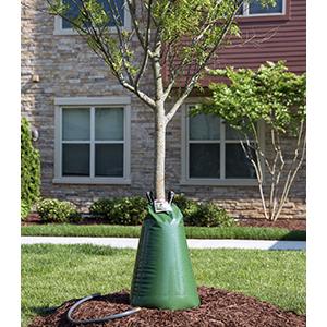 Treegator Original Product Image