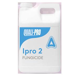 Ipro 2 Product Image