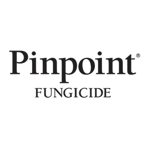 Pinpoint Product Image