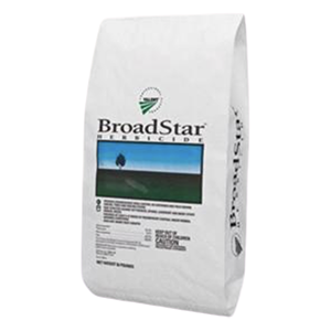 BroadStar Product Image