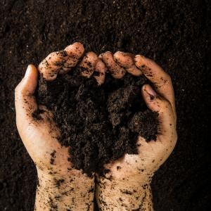 landscape soils